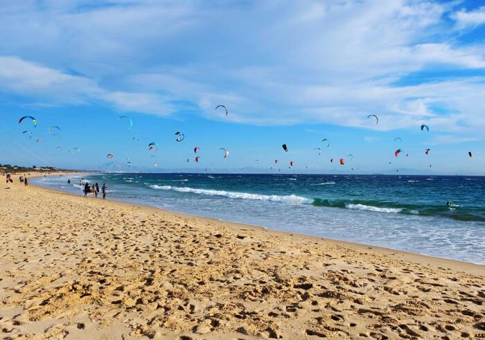 surf-sarbsk kite3